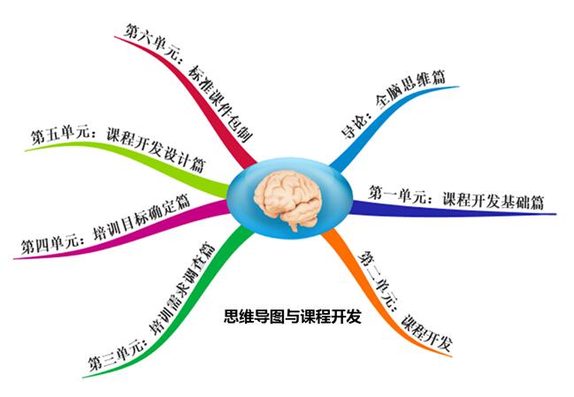 左右智能开发:逻辑思维—意识脑,语言脑,学术脑 b.